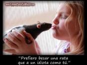 Antes que tú, una rata