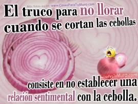 truco_para_cebollas-t2.jpg