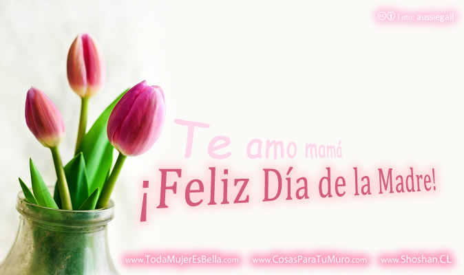 dia de las madres wallpaper - photo #36