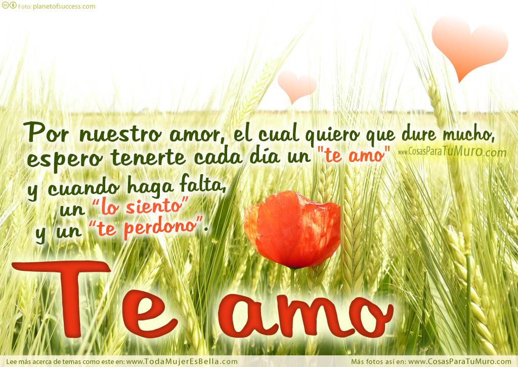 Por nuestro amor