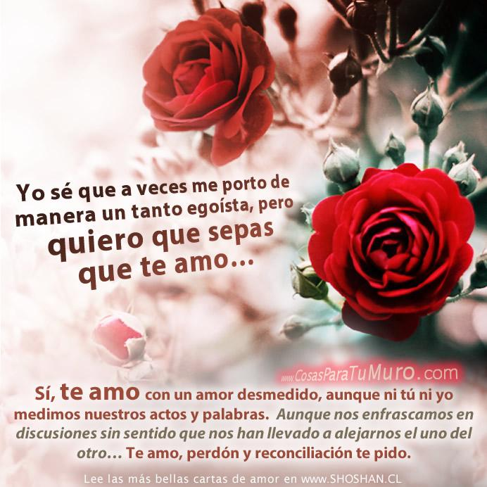 Te amo ♥ Perdón y reconciliación te pido.