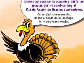Feliz Thanksgiving day (pulsa para ver)